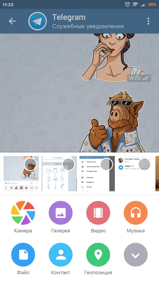 Скриншот #1 из программы Telegram