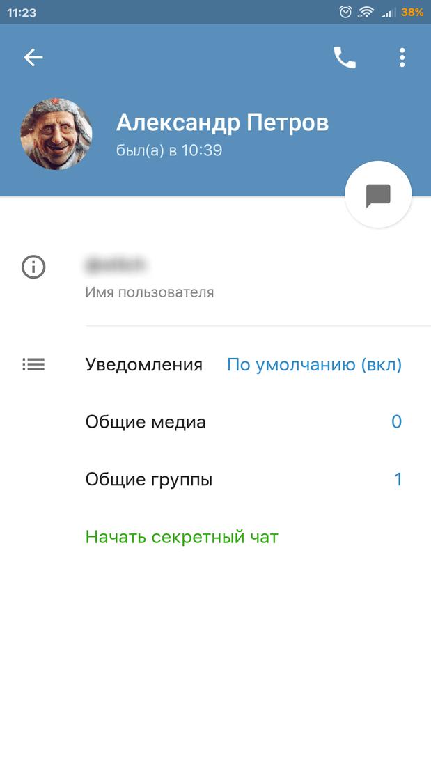 Скриншот #2 из программы Telegram