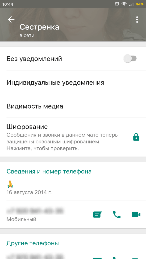 Скриншот #5 из программы WhatsApp Messenger